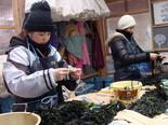 manapro-photo20130219-20-09.jpg