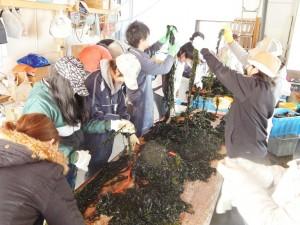 漁業支援5