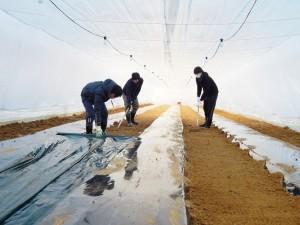 農業支援4