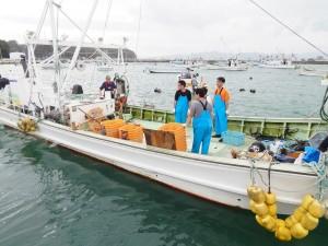 漁業支援1