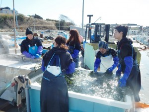 漁業支援2